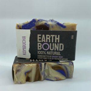 Earth Bound – Kombucha